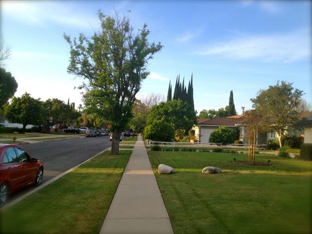 芝生でわかる格差「ビバリーヒルズの芝生は永遠に青く見える」
