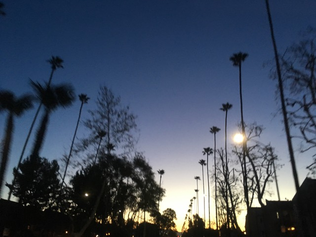 早朝のロサンゼルス北西部