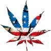 新たなカリフォルニア州法が施行され、嗜好マリファナ解禁・・